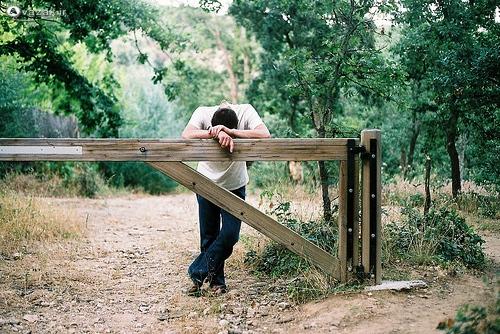 http://gallery.avazak.ir/albums/userpics/10001/Avazak_ir-Boy156.jpg